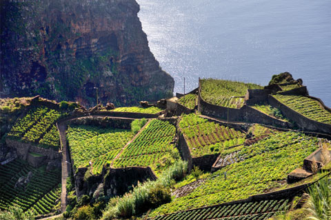 Madeira must see